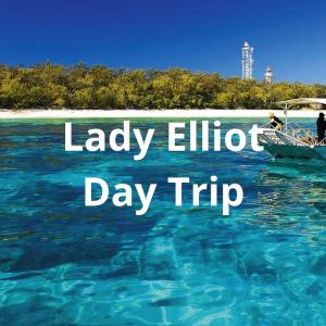 Lady Elliot Day Trip