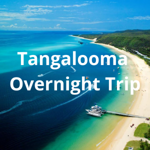 Tangalooma Overnight Trip
