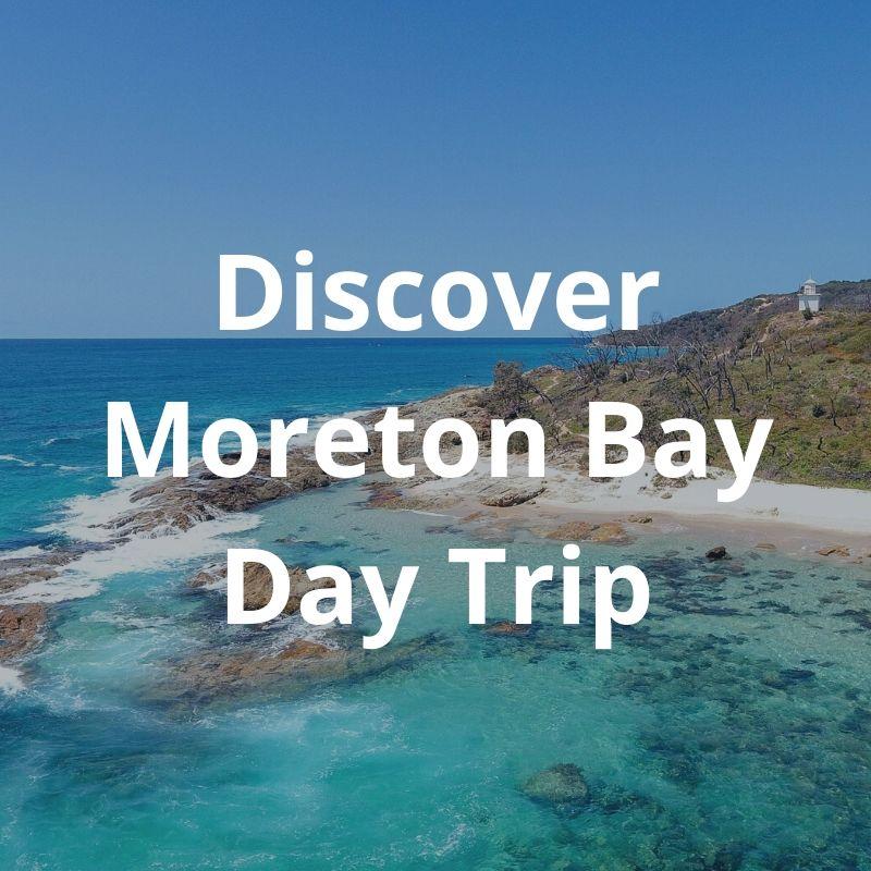 Discover Moreton Bay Day Trip
